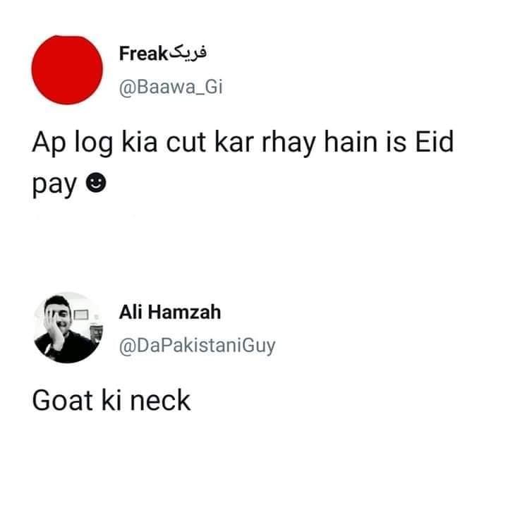 cow come hoi