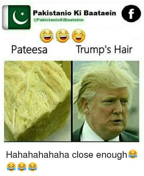 Pateesa Vs Trump Hair