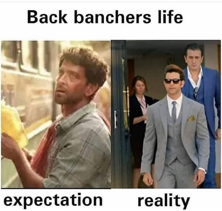 The Back Banchers Life