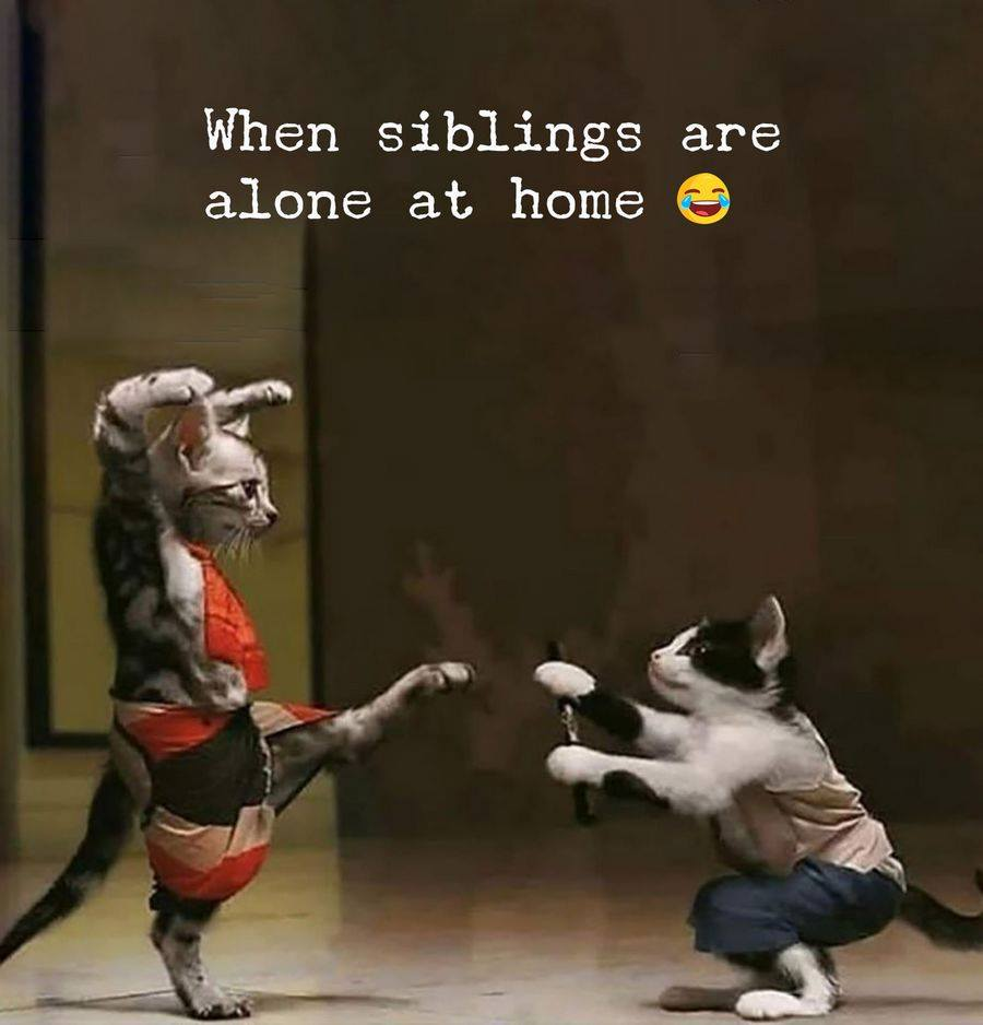 when siblings are alone at home