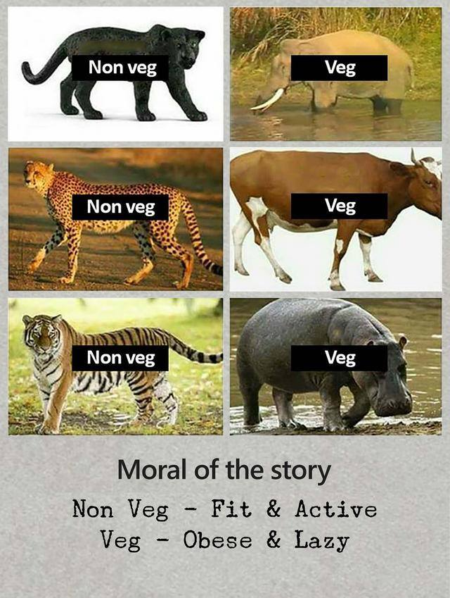 Veg vs Non Veg